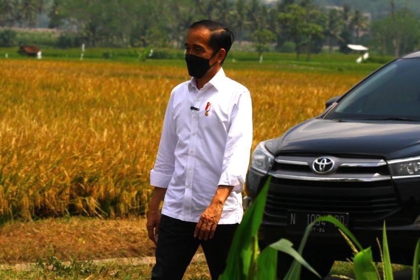 presiden-joko-widodo-berjalan-menuju-area-persawahan-saat-kunjungan_210429144454-436.jpg